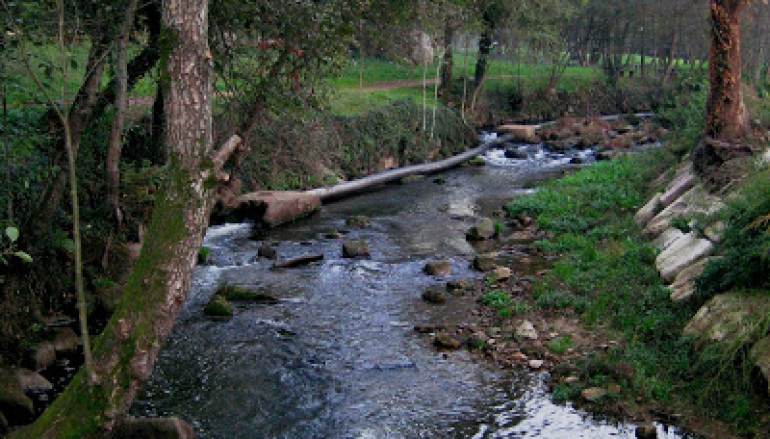 ETAR Arreigada rio Ferreira 1