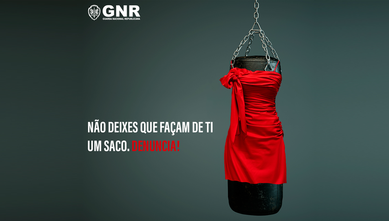 gnr 1 1