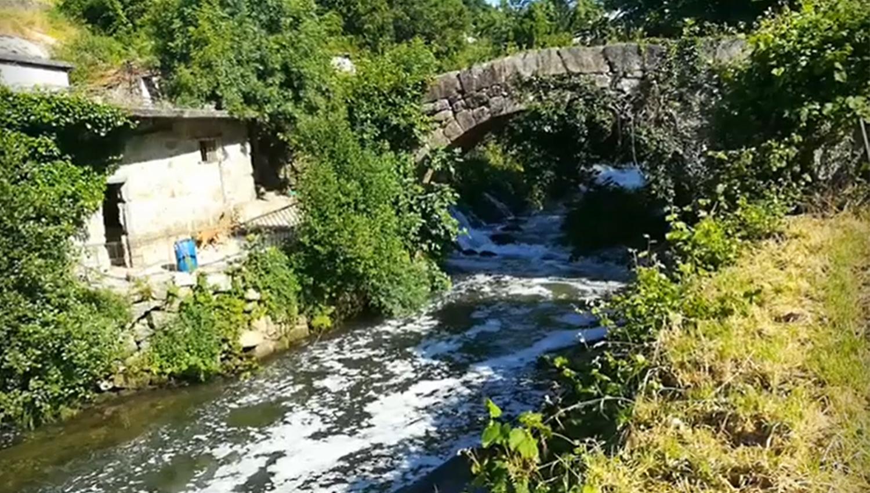 rio ferreira 1