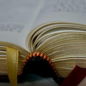 biblia padre 1