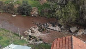 rio ferreira poluicao