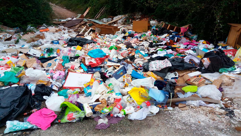 lixo frazao 1