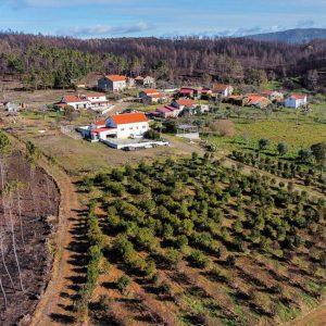 Mudar a paisagem para proteger pessoas e bens e permitir rendimento