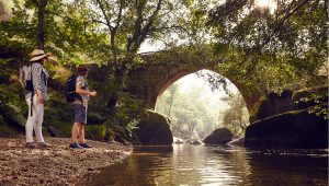 Rota do Românico participa em projeto do Turismo de Portugal