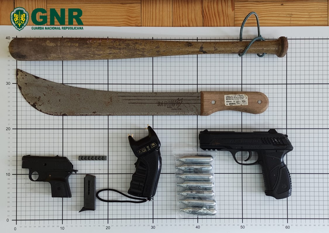 Armas / Violência doméstica